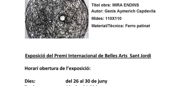 12a Edició Premi Internacional de Belles Arts Sant Jordi / Art tridimensional