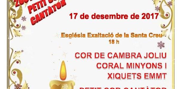 20è Aniversari Petit Cor Cantator