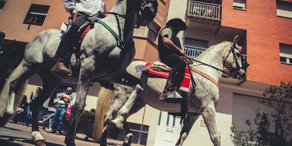 2a Festa dels Tres Tombs de Torrefarrera, aquest diumenge amb més de 60 cavalls de montura