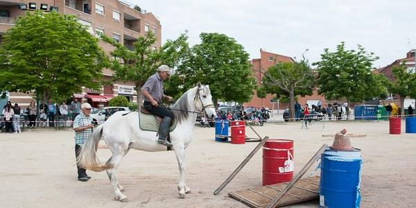 70 cavalls i 4 carruatges en la 6a Festa dels Tres Tombs de Torrefarrera