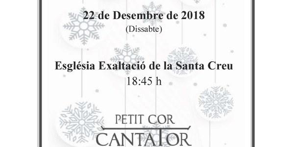 Concert de Nadal amb la Coral Petit Cor Cantator