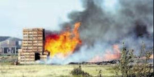Investiguen les causes del foc de 20.000 palots a Torrefarrera