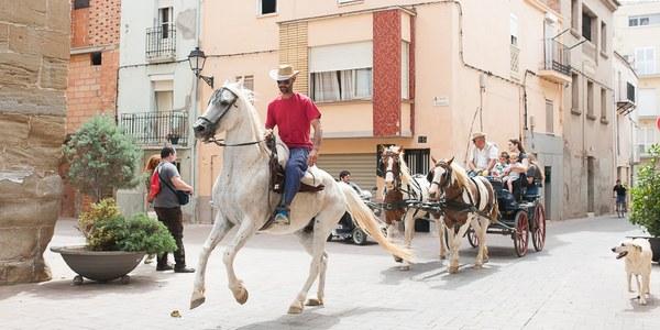 Més de 80 cavalls de muntura a la 4a Festa dels Tres Tombs de Torrefarrera