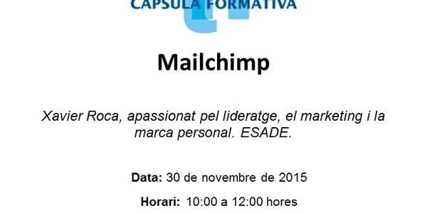 "Propera càpsula formativa al CeiTorrefarrera "" Mailchimp"""