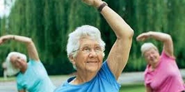 Xerrada sanitària de la gent gran. Envelliment Actiu i Saludable.